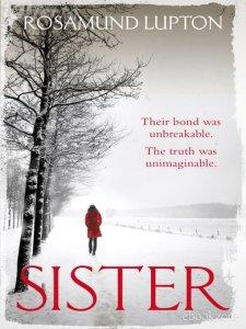 sister-rosamund-lupton-ebook-e6e66